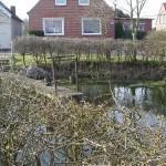 Oostfriesland 040